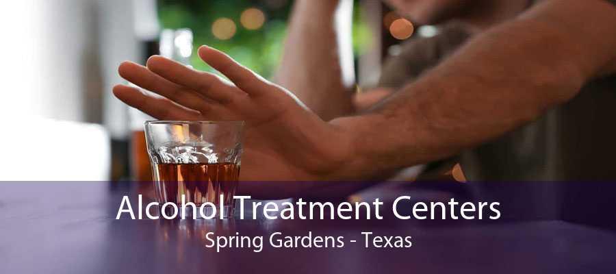 Alcohol Treatment Centers Spring Gardens - Texas