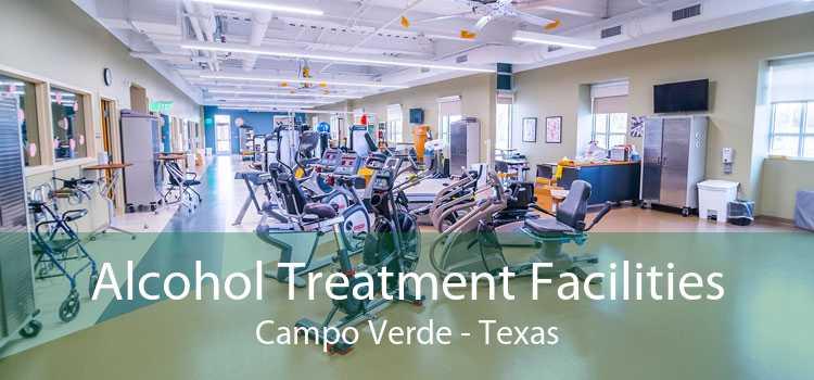 Alcohol Treatment Facilities Campo Verde - Texas