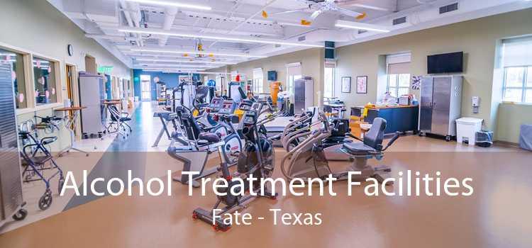 Alcohol Treatment Facilities Fate - Texas