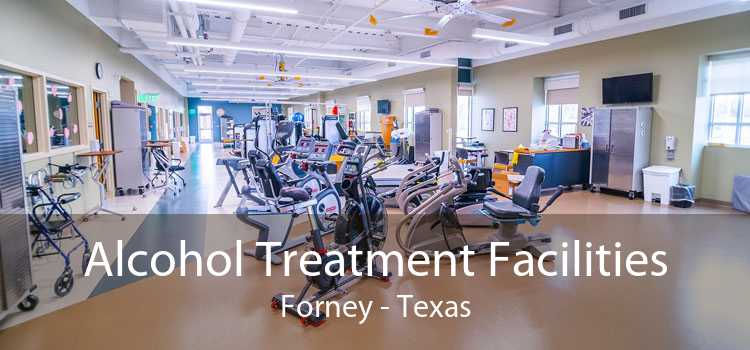Alcohol Treatment Facilities Forney - Texas