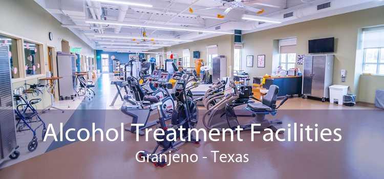 Alcohol Treatment Facilities Granjeno - Texas