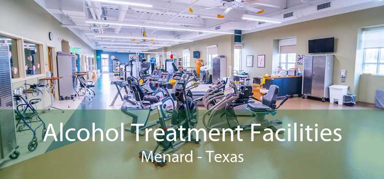 Alcohol Treatment Facilities Menard - Texas