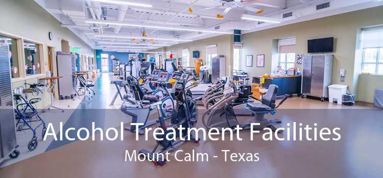 Alcohol Treatment Facilities Mount Calm - Texas