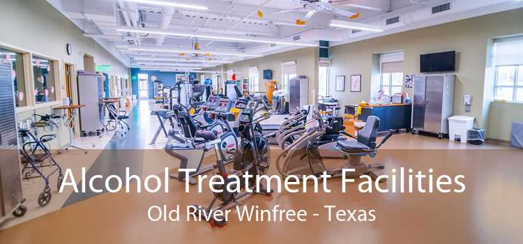 Alcohol Treatment Facilities Old River Winfree - Texas