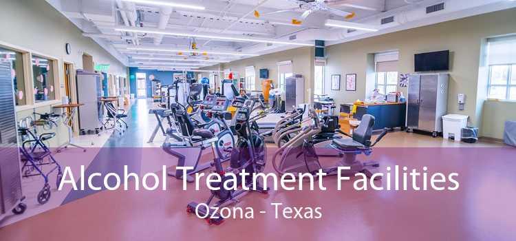Alcohol Treatment Facilities Ozona - Texas