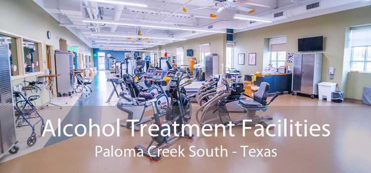 Alcohol Treatment Facilities Paloma Creek South - Texas
