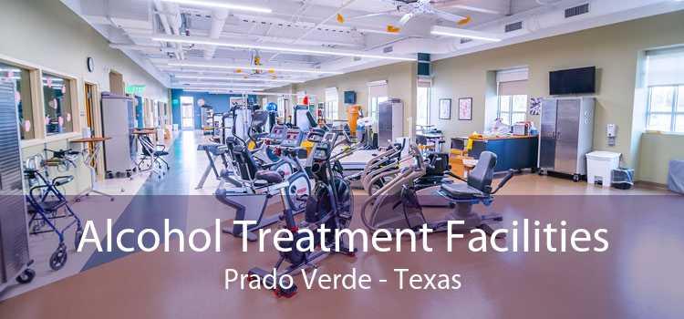 Alcohol Treatment Facilities Prado Verde - Texas