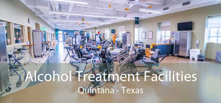 Alcohol Treatment Facilities Quintana - Texas