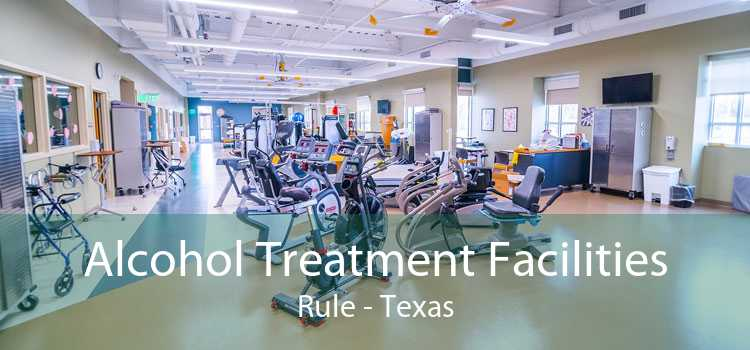 Alcohol Treatment Facilities Rule - Texas