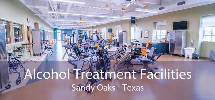 Alcohol Treatment Facilities Sandy Oaks - Texas