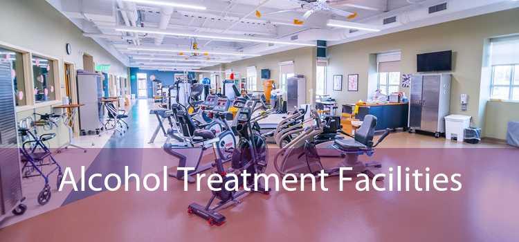 Alcohol Treatment Facilities
