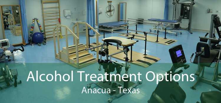 Alcohol Treatment Options Anacua - Texas