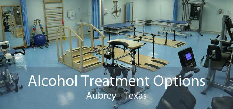 Alcohol Treatment Options Aubrey - Texas