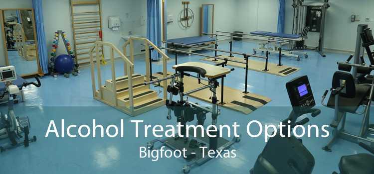 Alcohol Treatment Options Bigfoot - Texas