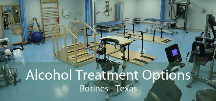 Alcohol Treatment Options Botines - Texas