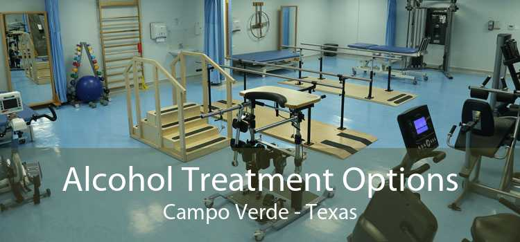 Alcohol Treatment Options Campo Verde - Texas
