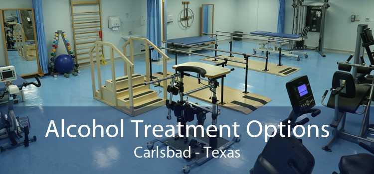 Alcohol Treatment Options Carlsbad - Texas
