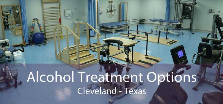 Alcohol Treatment Options Cleveland - Texas