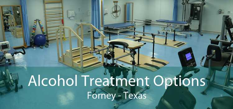 Alcohol Treatment Options Forney - Texas