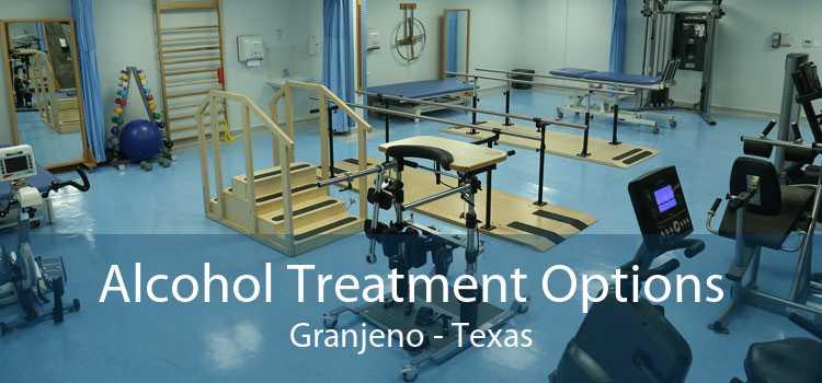 Alcohol Treatment Options Granjeno - Texas