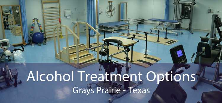 Alcohol Treatment Options Grays Prairie - Texas