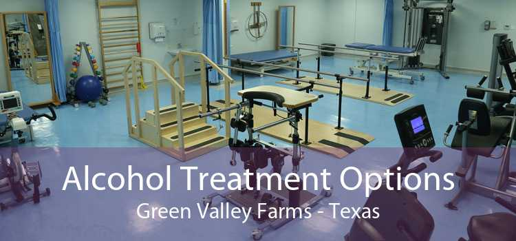 Alcohol Treatment Options Green Valley Farms - Texas