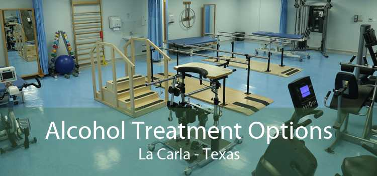 Alcohol Treatment Options La Carla - Texas
