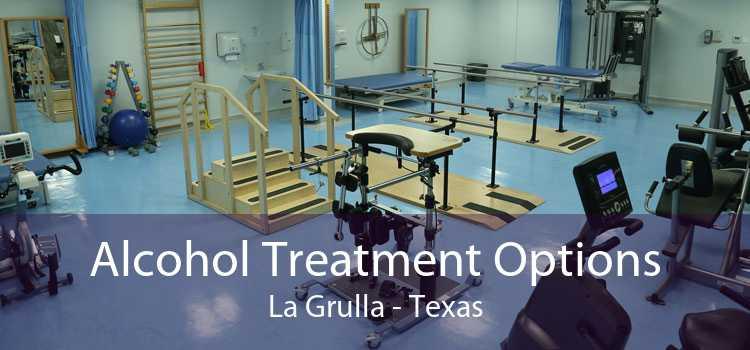 Alcohol Treatment Options La Grulla - Texas