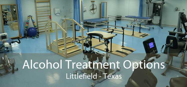 Alcohol Treatment Options Littlefield - Texas