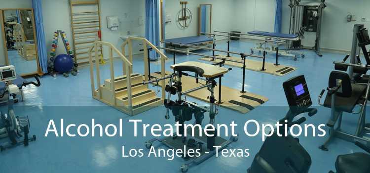 Alcohol Treatment Options Los Angeles - Texas