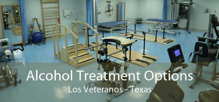 Alcohol Treatment Options Los Veteranos - Texas