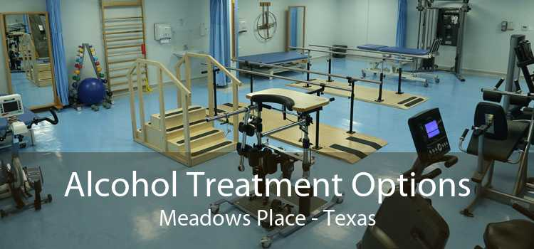 Alcohol Treatment Options Meadows Place - Texas