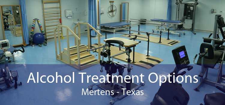 Alcohol Treatment Options Mertens - Texas