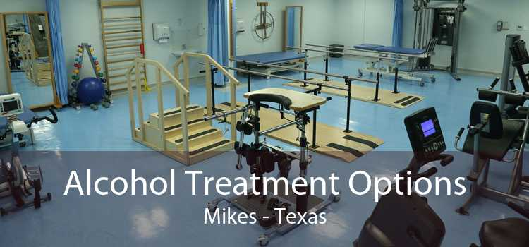 Alcohol Treatment Options Mikes - Texas