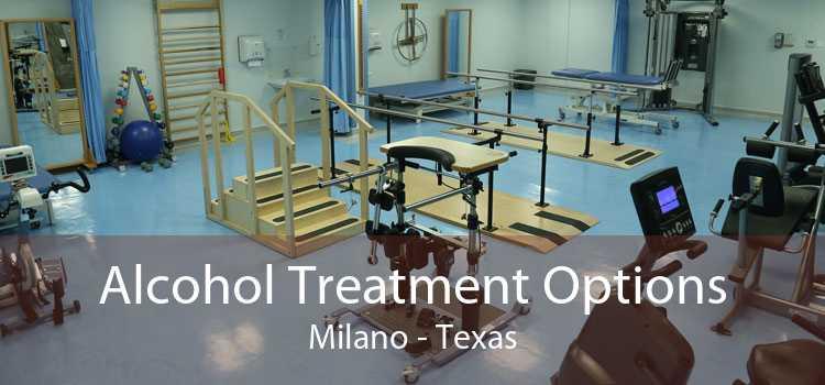 Alcohol Treatment Options Milano - Texas