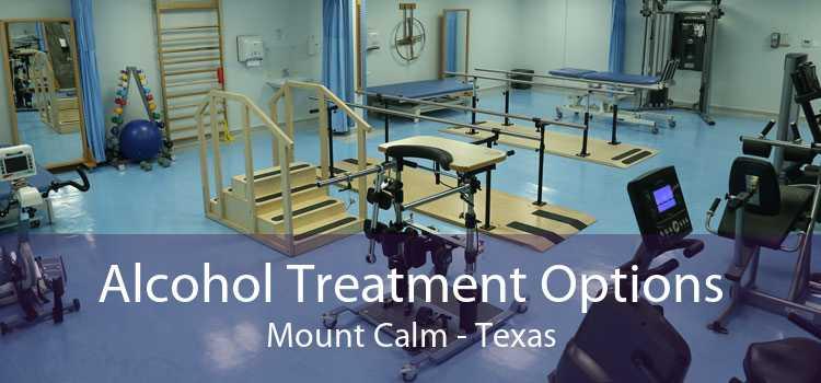 Alcohol Treatment Options Mount Calm - Texas