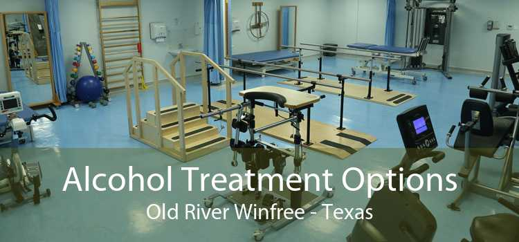 Alcohol Treatment Options Old River Winfree - Texas