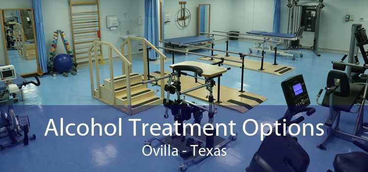 Alcohol Treatment Options Ovilla - Texas