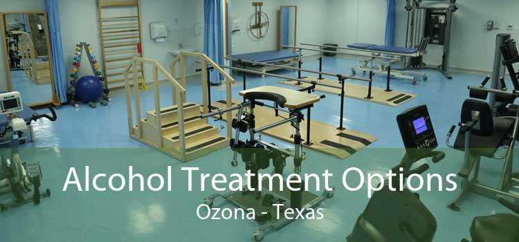 Alcohol Treatment Options Ozona - Texas