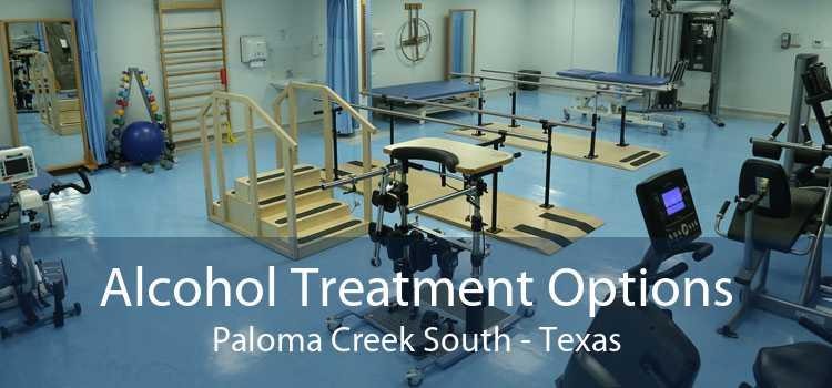 Alcohol Treatment Options Paloma Creek South - Texas