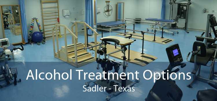 Alcohol Treatment Options Sadler - Texas