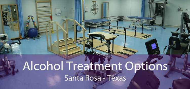 Alcohol Treatment Options Santa Rosa - Texas