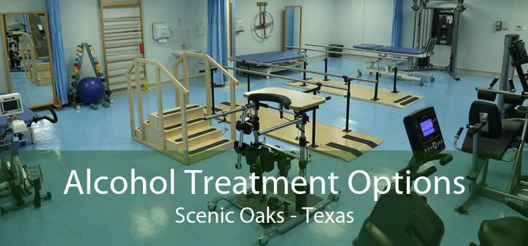 Alcohol Treatment Options Scenic Oaks - Texas
