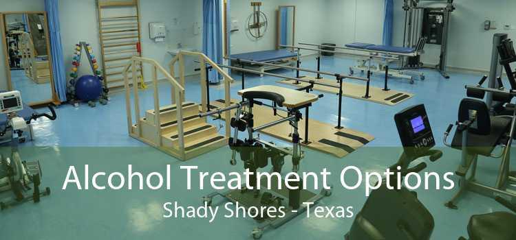 Alcohol Treatment Options Shady Shores - Texas