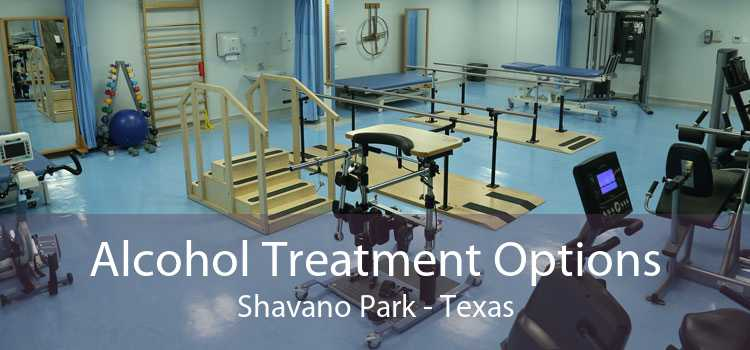 Alcohol Treatment Options Shavano Park - Texas