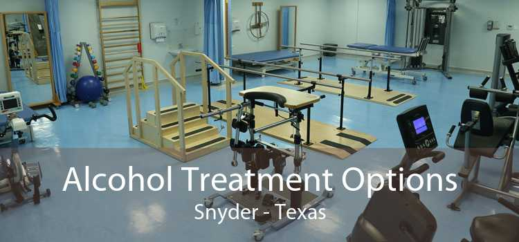 Alcohol Treatment Options Snyder - Texas