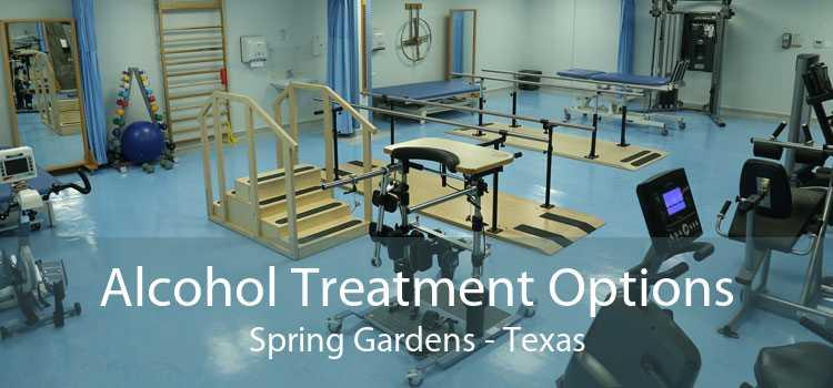 Alcohol Treatment Options Spring Gardens - Texas