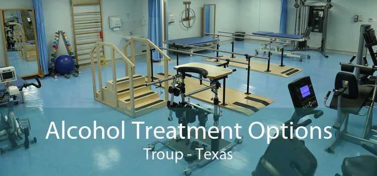 Alcohol Treatment Options Troup - Texas