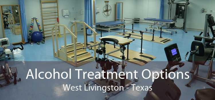 Alcohol Treatment Options West Livingston - Texas