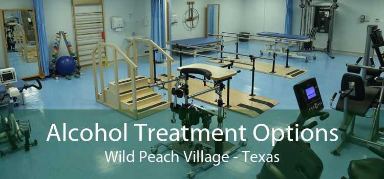 Alcohol Treatment Options Wild Peach Village - Texas